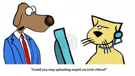 Cat Trick Videos