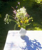 Jug of Wild Flowers on a Table.