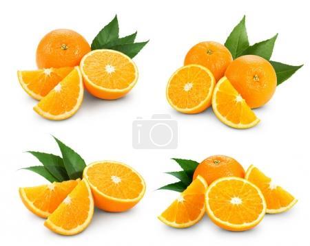 Orange isolé sur blanc
