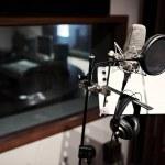 Modern microphone in recording studio, selective f...