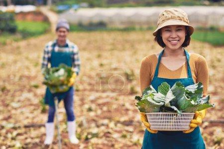 Asian farmer with basket