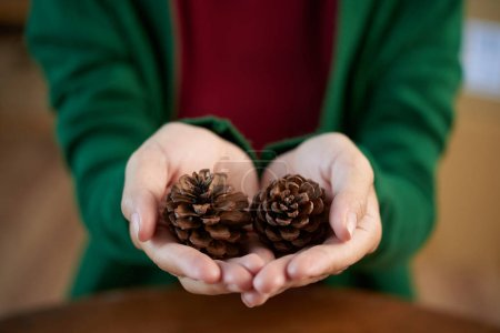 Hands of woman with two pine cones