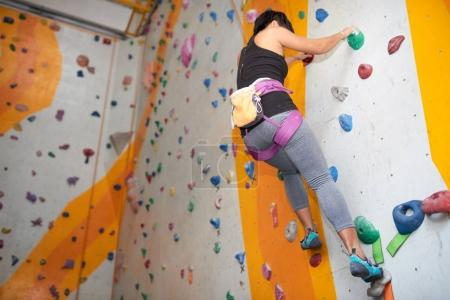Photo for Female climber having training indoors, strength and endurance concept - Royalty Free Image