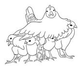 Cute chicken line art 03 Good use for symbol logo web icon mascot coloring sign or any design you want