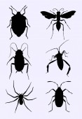 Bug silhouette 03 Good use for symbol logo web icon mascot sign or any design you want