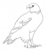 Eagle line art 02 Good use for symbol logo web icon mascot coloring sign or any design you want