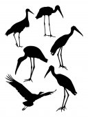 Stork birds silhouette 01 Good use for symbol logo web icon mascot sign or any design you want