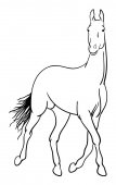 Horse line art 01 Good use for symbol logo web icon mascot coloring sign or any design you want