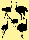 Ostrich animal detail silhouette 03 Vector illustration Good use for symbol logo web icon mascot sign or any design you want