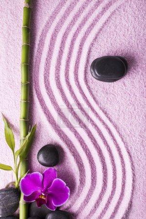 spa avec jardin zen