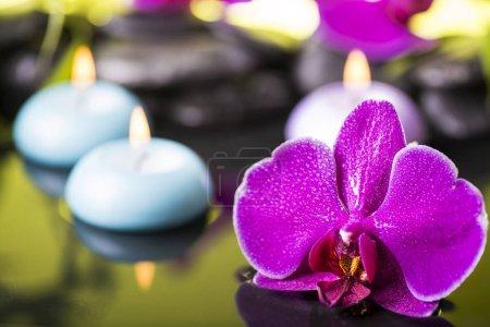 Photo pour Jardin zen avec pierres noires, orchidée pourpre et bougies flottantes - image libre de droit