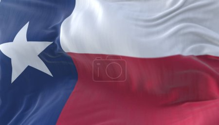 Flag of american state of Texas, region of the Uni...