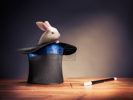 High contrast image of magician hat