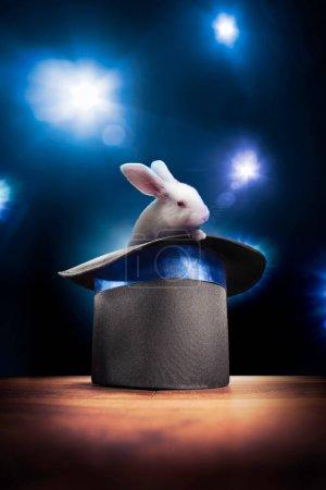 Photo pour Photo composite d'un lapin dans un chapeau magique sur une scène - image libre de droit