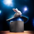 Постер, плакат: High contrast image of magician hat on a stage