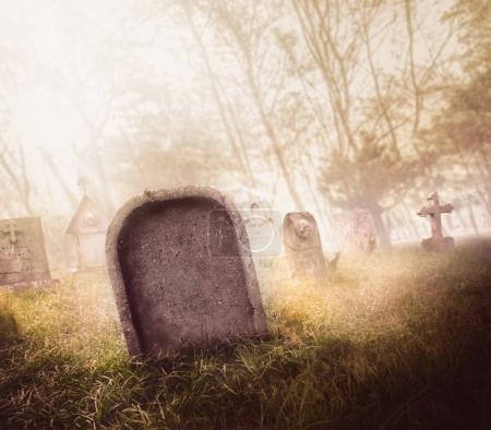 Photo pour Cimetière avec brouillard avec éclairage dramatique - image libre de droit