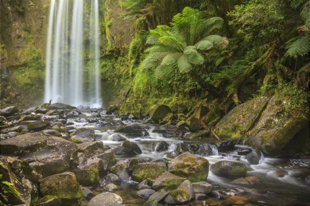 Photo for A waterfall and stream in Victoria, Australia. - Royalty Free Image