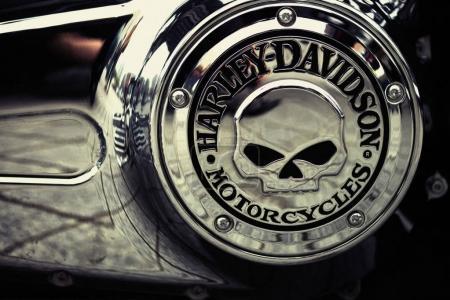Harley Davidson Bike logo skull