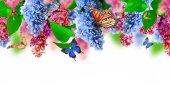 """Постер, картина, фотообои """"Удивительные Сиреневая Весна на открытке цветок"""""""