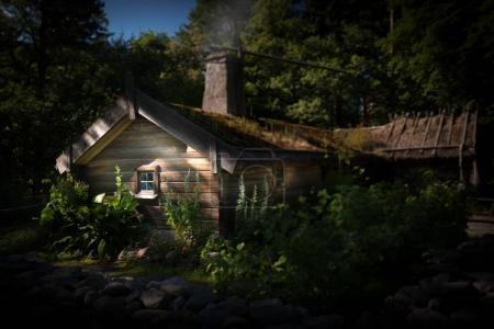 Skansen open-air museum and zoo in Sweden located ...