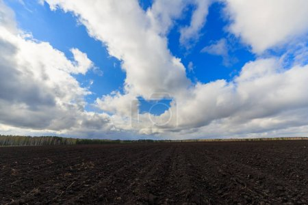 Photo for Clouds over arable land close-up - Royalty Free Image