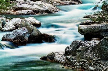 Photo pour Ruisseau Corsaglia - Le torrent Corsaglia, dans la vallée du même nom, près de Bossea, dans le Piémont . - image libre de droit