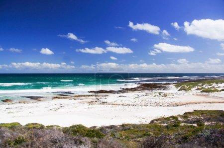 Photo pour Baie de Sandy au Cap de bonne-espérance - image libre de droit
