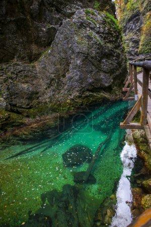 Photo pour Rivière forestière dans le parc Jezera de Plitvice (Croatie). - image libre de droit