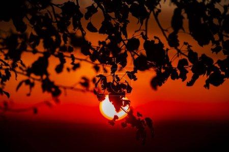 Photo pour Coucher du soleil sur champ d'automne - image libre de droit