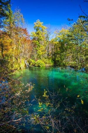 Photo pour Pond dans le parc Jezera de Plitvice (Croatie). - image libre de droit