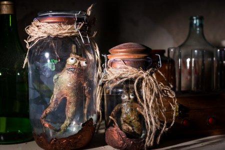 Dead creatures inside mason jars