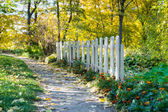 White wooden fence in a park or a forest with a path in the midd