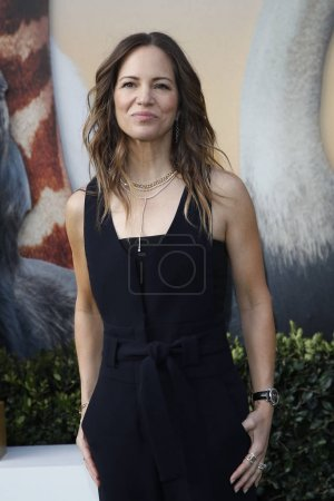 """Photo for LOS ANGELES - JAN 11:  Susan Downey at the """"Dolittle"""" Premiere at the Village Theater on January 11, 2020 in Westwood, CA - Royalty Free Image"""