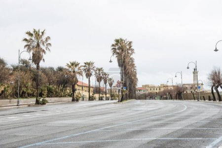 Photo for Row of palm trees surrounding road at european city, Anzio, Italy - Royalty Free Image