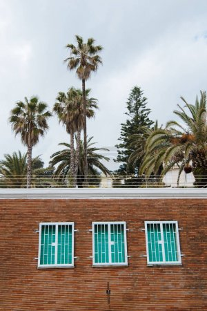 facade of house with shuttered windows in front of palms, Anzio, Italy
