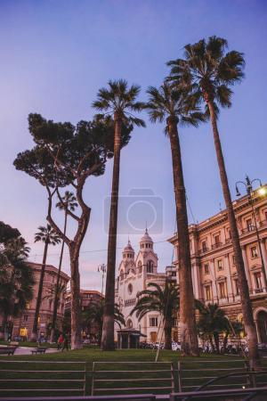 ROME, ITALY - 10 MARCH 2018: bottom view of palm trees in square at Rome in evening