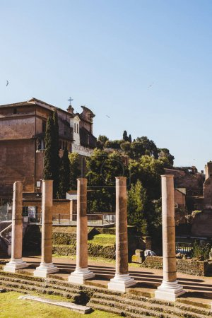 Photo for Columns at Roman Forum ruins in Rome, Italy - Royalty Free Image