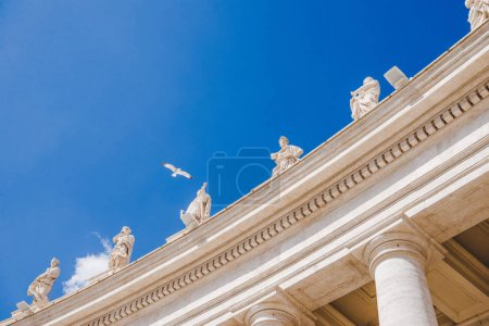 Bottom view of bird flying above statues at St Peters Square in Vatican, Italy