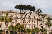"""Постер, картина, фотообои """"Пальмовые деревья и старое здание в Риме, Италия"""""""