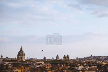 Photo for Bird flying above of St Peters Basilica in Rome, Italy - Royalty Free Image