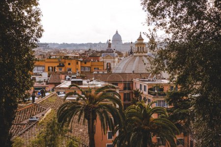 view through trees and palm trees on Rome, Italy