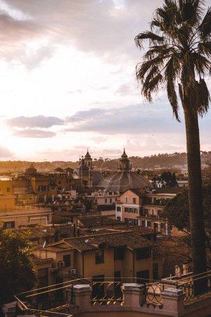Photo pour Palmier et bâtiments pendant le lever du soleil à Rome, Italie - image libre de droit