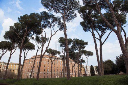 Photo for Beautiful trees and building in Rome, Italy - Royalty Free Image
