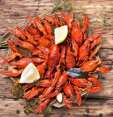 Photo pour Fruits de mer savoureux crustacés servis sur l'assiette - image libre de droit