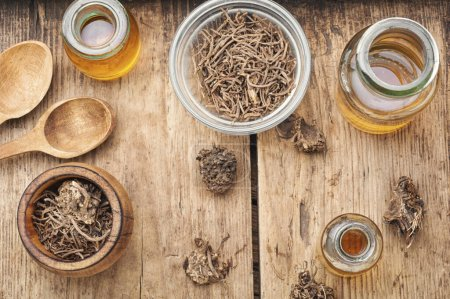 Medicinal tincture from the roots and rhizomes of ...