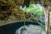 Cenote Suytun at Valladolid, Yucatan - Mexico