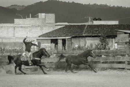 Photo pour Un cow-boy et son cheval, essaient de corde un cheval sauvage dans un cadre petit pueblo. - image libre de droit