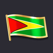 flag of Guyana in the form of badge flat image