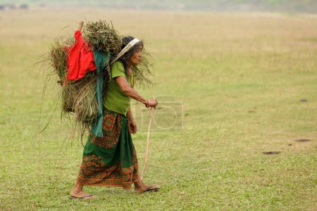 Nepalese farmer carrying animal feed