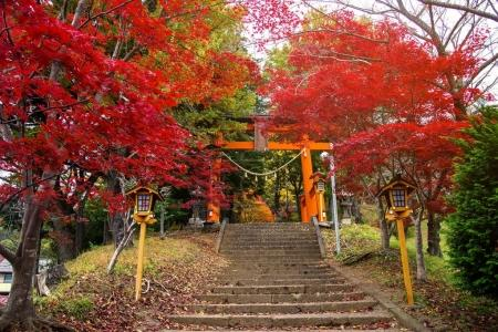 entrance gate of Chureito pagoda with autumn leaf